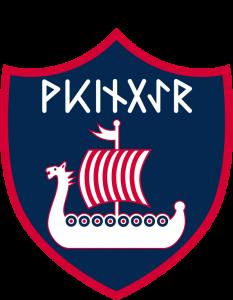 Stamm-Wikinger-Logo-RZ